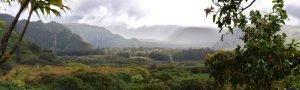 Hawaii Background Header